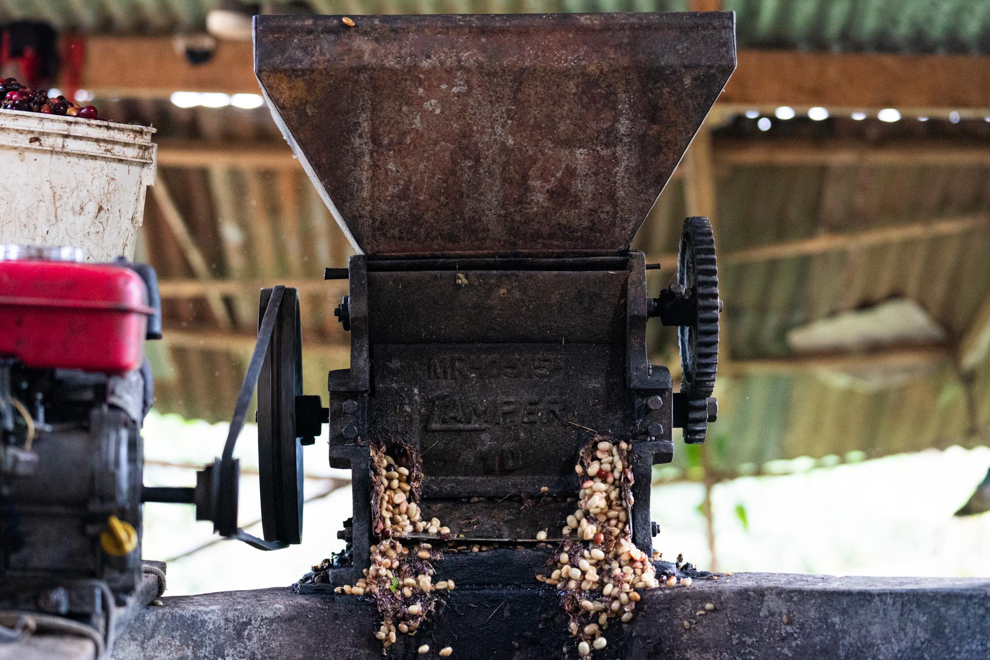 Cafe_Imports_Peru-1-9